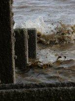 muddy-waves