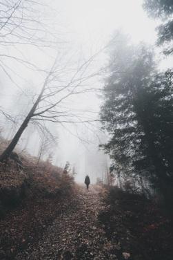 path alessio-lin-275489